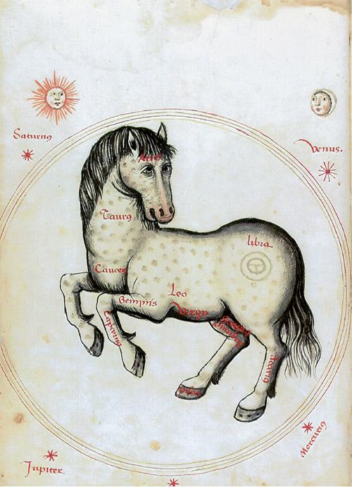Manuel Díez: Caballo astrológico. Llibre de Menescalia, 1502. Barcelona, Biblioteca de Catalunya, ms. 1661, fol. 5v.